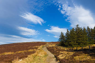 Photograph - Wicklow Way Trail Through Wicklow Mountains by Semmick Photo