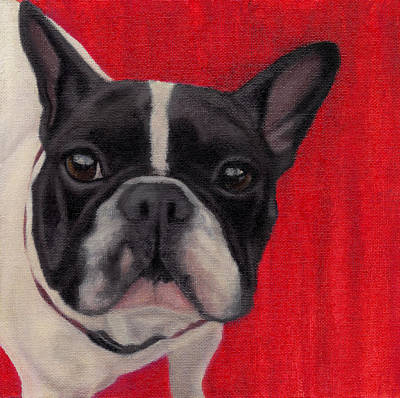 French Bull Dog Wall Art - Painting - Wide-eyed Red by Dana Feagin