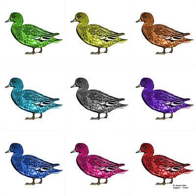 Mixed Media - Wigeon Art Pop Art  - 7415 - Wb - M by James Ahn