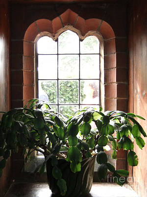 Arts And Crafts Movement Photograph - Wightwick Manor Window One by Coventry Wildeheart