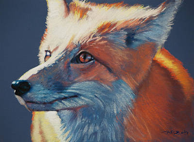 Pastel - Wilbur Fox by Christopher Reid