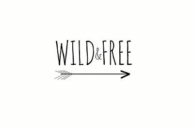 Digital Art - Wild And Free by Chastity Hoff