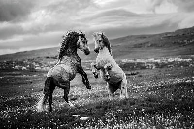 Wild Horse Wall Art - Photograph - Wild And Free by Vedran Vidak