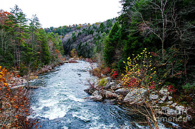 Obed Photograph - Wild And Scenic Obed River by Paul Mashburn
