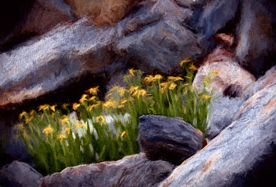 Colour Mixed Media - Wild And Scree by John K Woodruff
