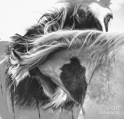 Gale Digital Art - Wild And Windy by Wobblymol Davis