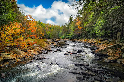 Wild Appalachian River Art Print