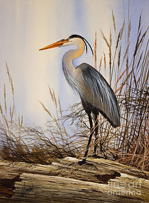 Great Blue Heron Painting - Wild Beauty by James Williamson