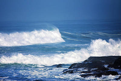 Photograph - Wild Blue Two by Kandy Hurley