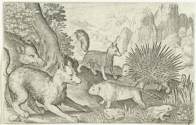 Beaver Drawing - Wild Boar, Fox, Beaver, Porcupine And Frogs by Nicolaes De Bruyn