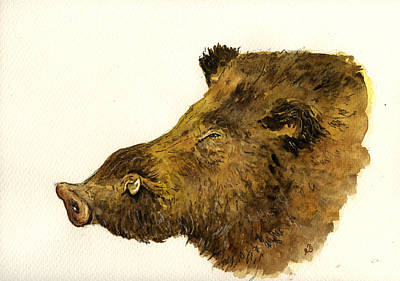 Natur Painting - Wild Boar Head Study by Juan  Bosco
