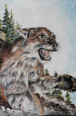 Wild Cat Original by Martin Way