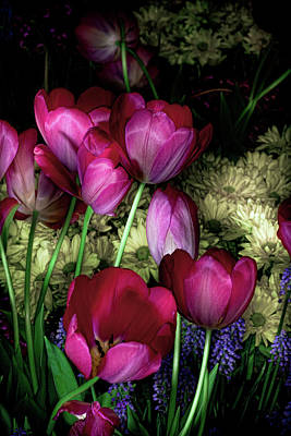 Wild Crazy Beautiful Tulip Garden Art Print