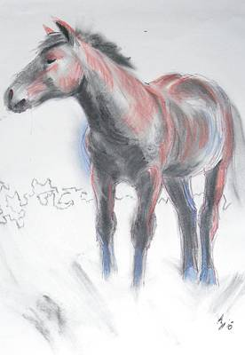 Painting - Wild Dartmoor Horse by Mike Jory