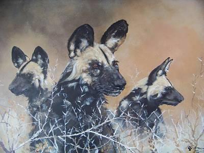 Wild Dog Trio Art Print by Robert Teeling