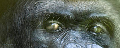Mixed Media - Wild Eyes - Silverback Gorilla by Carol Cavalaris