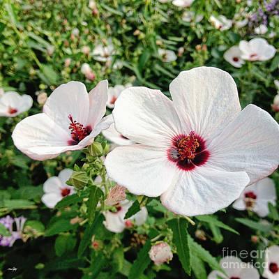 Louisiana Swamp Photograph - Wild Flowers by Scott Pellegrin