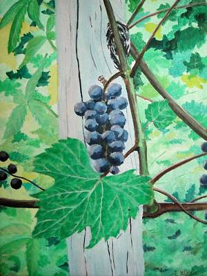 Wheat Painting - Wild Grapes In North Dakota by David Wolfer