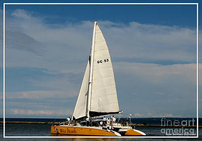 Hearts Photograph - Wild Hearts Catamaran On Lake Ontario At Rochester New York by Rose Santuci-Sofranko