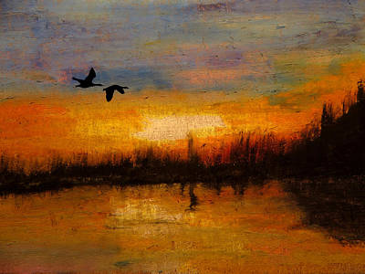 Canadian Geese Mixed Media - Wild Home by R Kyllo