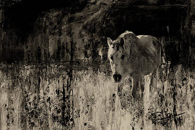 Mixed Media - Wild Horse by Jim Vance