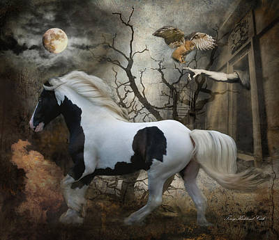 Provocative Digital Art - Wild Horse Of The Apocalypse by Terry Kirkland Cook