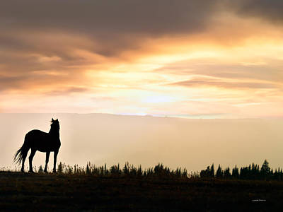 Wild Horse Sunset Art Print by Leland D Howard