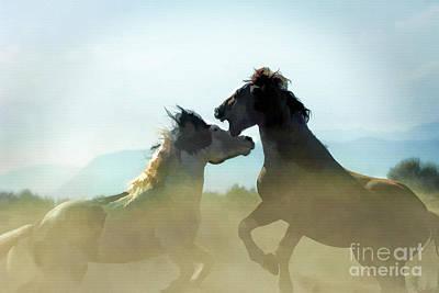 Animals Photograph - Wild Horses - Art by Wildlife Fine Art