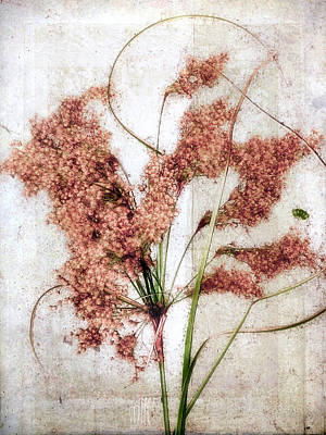 Wild Indian Rice In Autumn #2 Art Print
