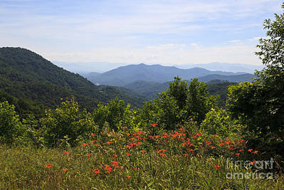 Photograph - Wild Lilies With A Mountain View by Jill Lang
