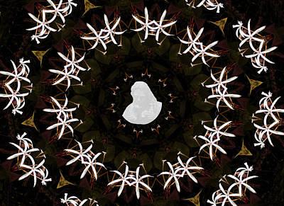 Wild Lily Kalidescope Art Print by Rosalie Scanlon