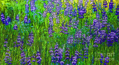 Wild Lupine Art Print by Nancy Marie Ricketts