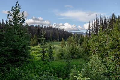 Photograph - Wild Meadow by Ryan Heffron