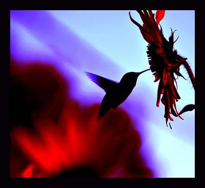 Landscapes Kadek Susanto - Wild Mountain Sunflower by Susanne Still
