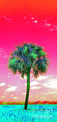 Wild Palm 2 Art Print
