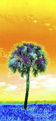 Digital Art - Wild Palm 5 by John Douglas