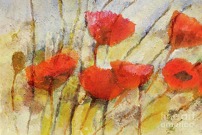 Poppies Art Painting - Wild Poppies by Lutz Baar