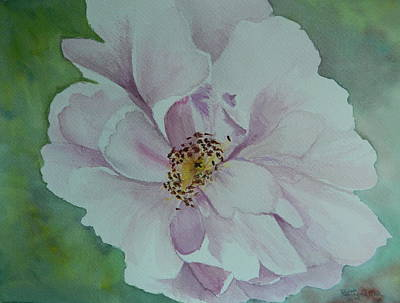 Nature Center Painting - Wild Rose by Betty-Anne McDonald