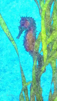 Photograph - Wild Seahorse by Susan Molnar