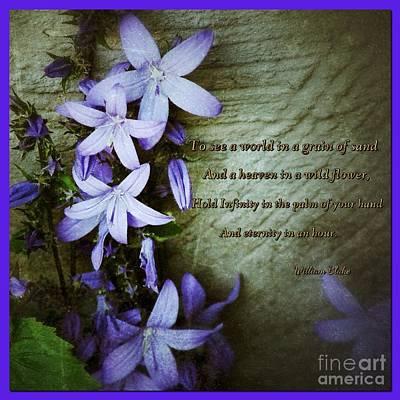 William Blake Digital Art - Wild Star Flowers And Innocence  by Joan-Violet Stretch
