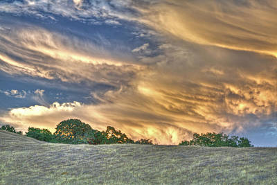 Photograph - Wild Sunset At Tree Line by SC Heffner