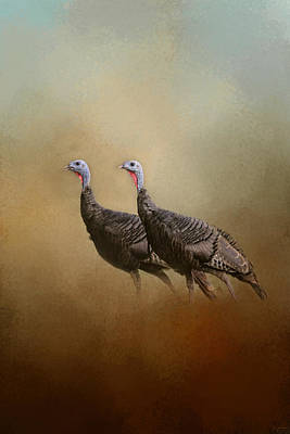Wild Turkey At Shiloh Art Print
