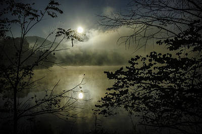 Radnor Photograph - Wild With Light by LeAnne Thomas
