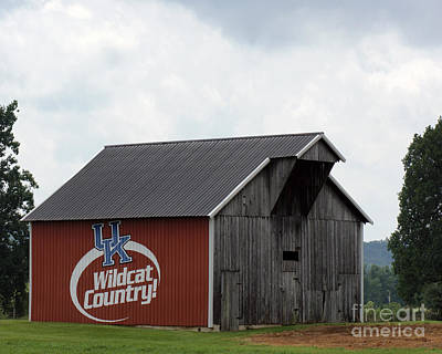 Wildcat Country Barn Art Print by Roger Potts