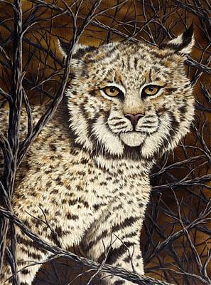 Bobcat Painting - Wildcat by Rick Bainbridge