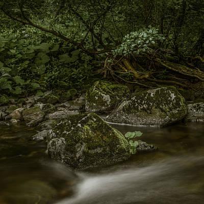 Photograph - Wilde Gutach I by Alexander Kunz