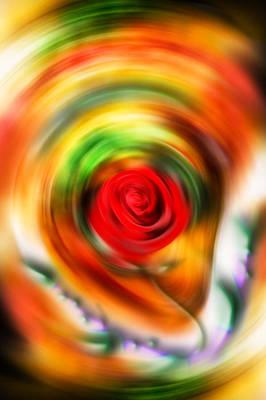 Digital Art - Wild Rose by Alessandro Della Pietra