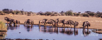 Animals Digital Art - Wildebeest At An Etosha Waterhole by Liz Leyden