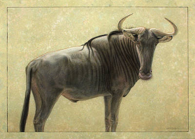 African Animals Drawing - Wildebeest by James W Johnson
