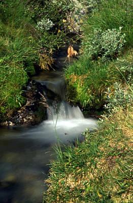 Thomas Kinkade - Wilderness Stream by Sasas Photography